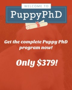 Click to get the complete PuppyPhD Program!
