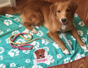 Dog custom blanket