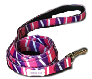 smiling dog leash